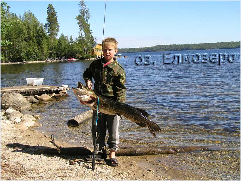 ловля палии на онежском озере